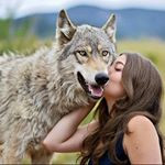 buy instagram account *****wolves